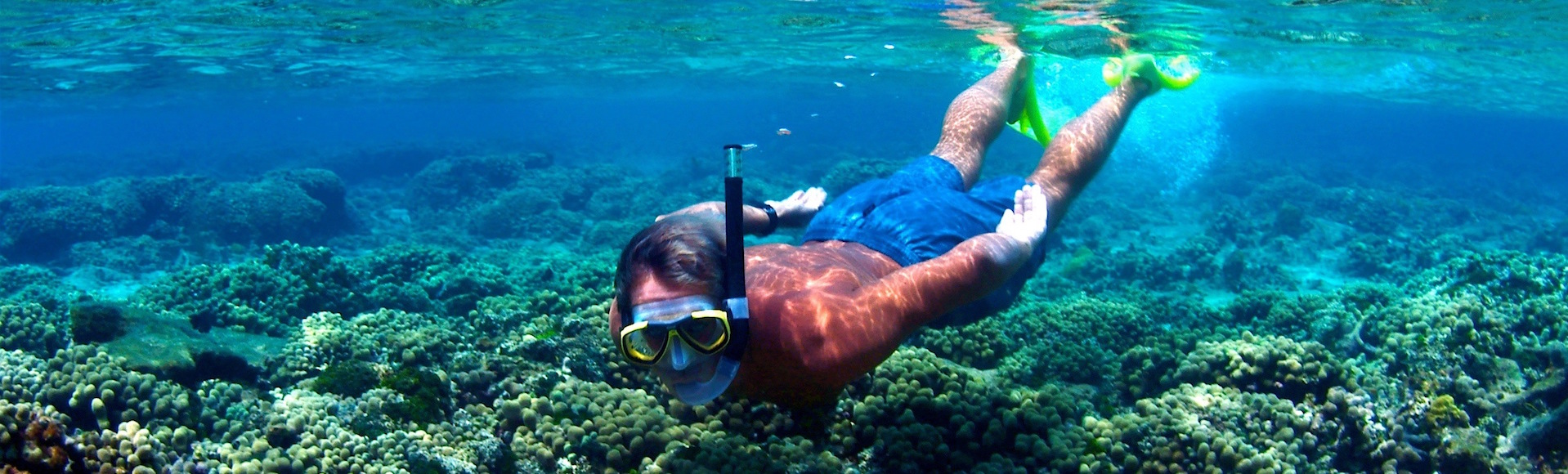 Snorkel Private Charters