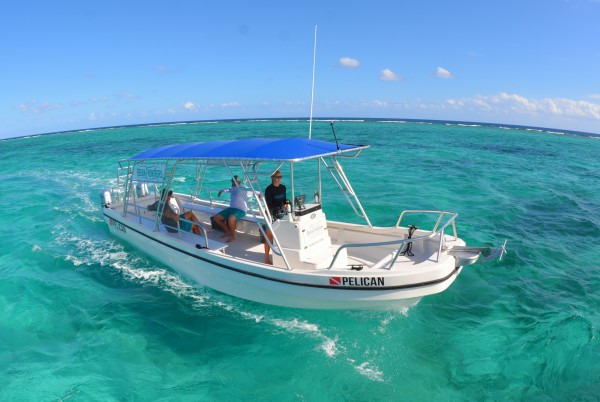 New Trips & New Boat for Snorkel Trips with Ocean Frontiers
