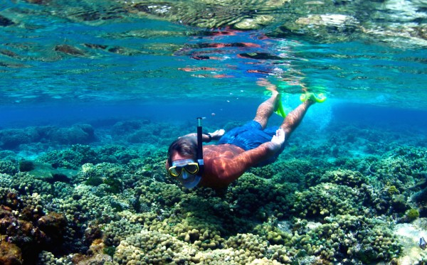 3-Stop Coral Reef