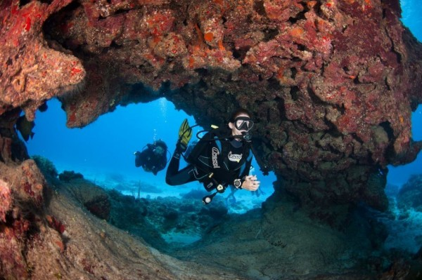 7- Seven nights, six days of diving, breakfast and car rental for the entire stay (Per Person / Dive