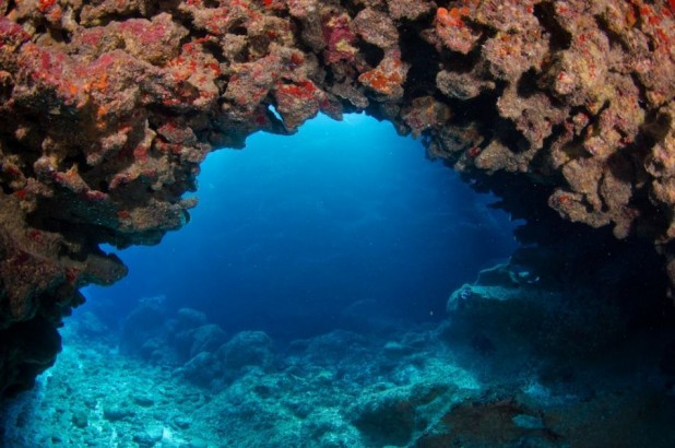3- Three Nights, two days of diving, breakfast and car rental for entire stay (Per Person / Diver)