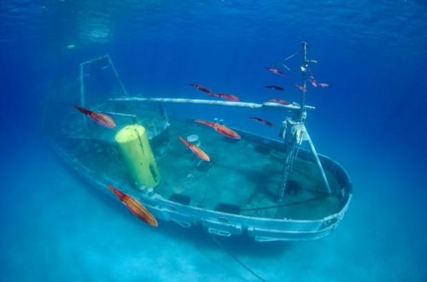 Kittiwake Wreck - 1-Tank PM Boat Trip - Wreck-Kittiwake