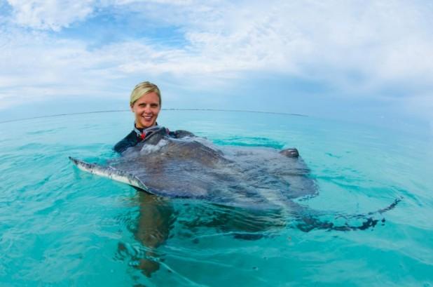 Dawn Stingrays Snorkel Boat Trip - Dawn Stingrays