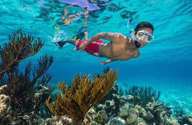 X-Snorkel Adventure Boat Trip in Grand Cayman - X-Snorkel