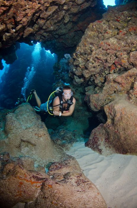 2-Tank Boat Dive in the Cayman Islands - Image 95