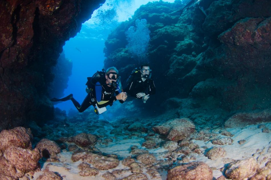2-Tank Boat Dive in the Cayman Islands - Image 97