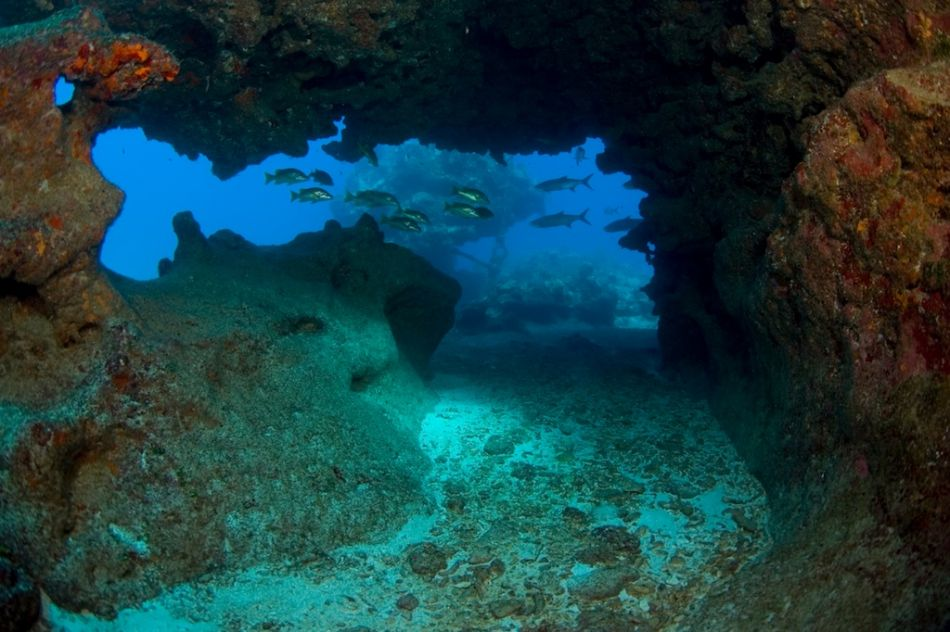 Cayman-Cavern-Diving-386