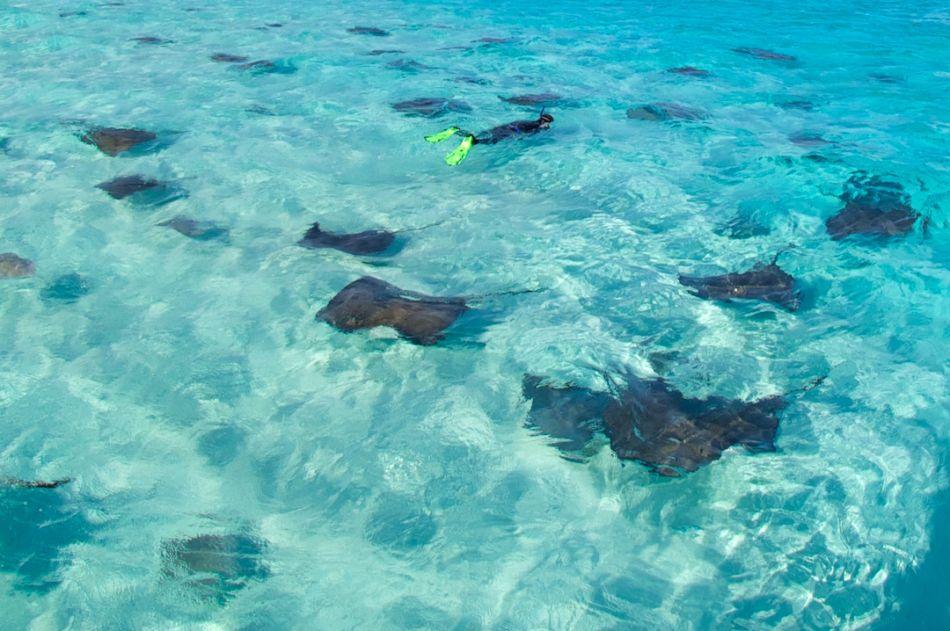 Stingray-Snorkel-Sandbar-View-Above-1080x