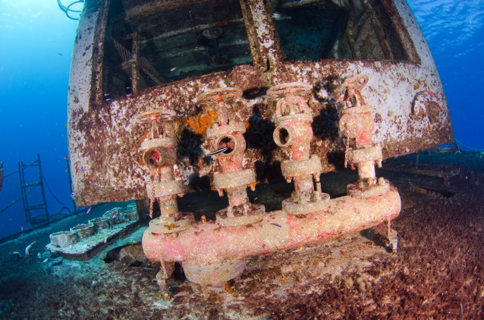Kittiwake Wreck Diving in Grand Cayman - Image 24