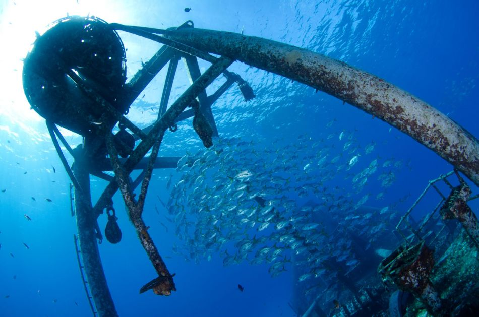 Kittiwake Wreck Diving in Grand Cayman - Image 30