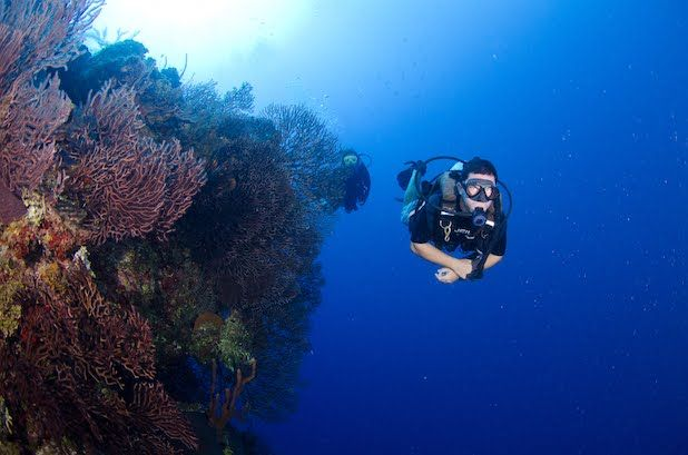 PADI Deep Diver Certification in Grand Cayman